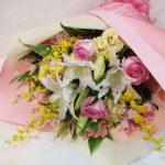 Fairy_Pink