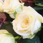 diamond_rose20