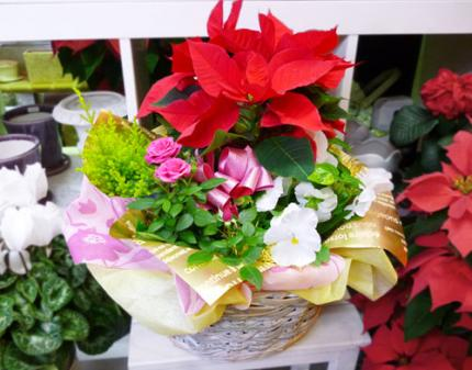 gift_of_winter_c