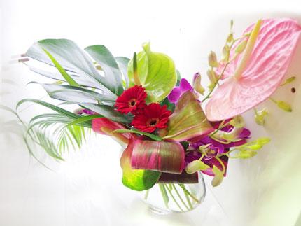 hawaiian_garden