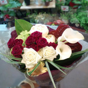 infinite-red-seika