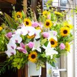 summer-festivalstand