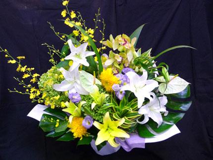 yellowsong